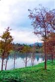 雲山水自然生態農場