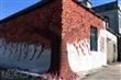 瓊林紅磚牆