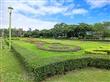 花博新生公園(迷宮花園)