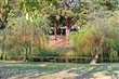 巴克禮公園