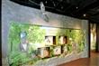 二水臺灣獼猴生態教育館
