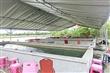 泰國蝦生態園區-蘭陽蟹莊