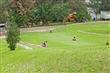 福德坑環保復育公園