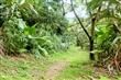 馬偕真愛森林療癒步道