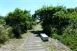 蘭陽溪口水鳥保護區