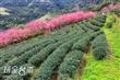 玉蘭休閒農業區