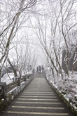 太平山森林遊樂區