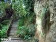 雞冠山登山健康步道