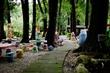八大森林博覽樂園