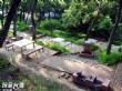 貓貍山公園