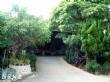 九華山—大興善寺
