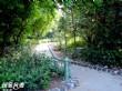 濱海森林公園
